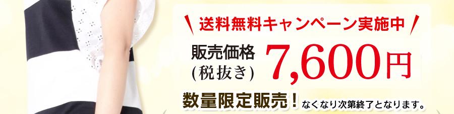 送料無料キャンペーン実施中 販売価格7,980円