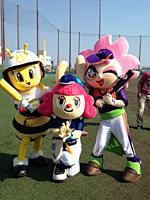 女子プロ野球