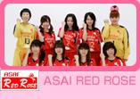 ASAI RED ROSE