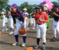 日本女子プロ野球機構